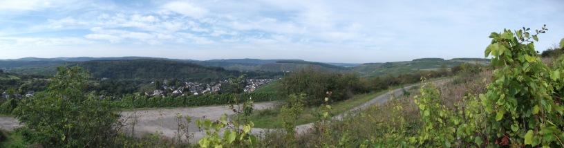 Panoramablick Scharzberg