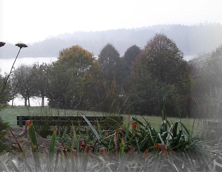 nebel-see2