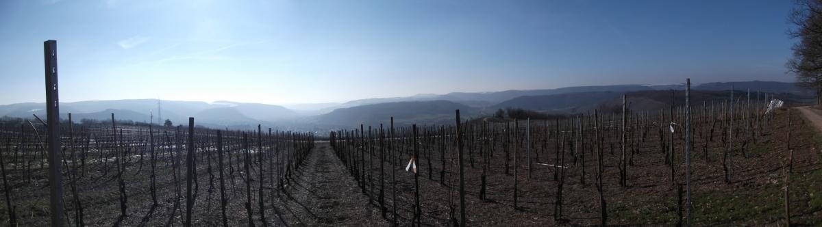 Winterspaziergang am Galgenberg