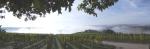 Wiltinger Galgenberg Panorama
