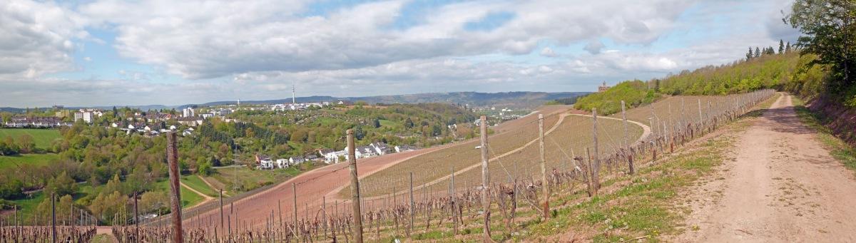 "Wanderweg ""Thiels Burg - Domäne Avelsbach"""