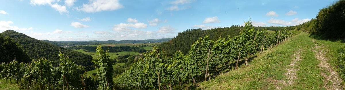 """""""Seitensprung"""": Saar-Riesling-Steig"""